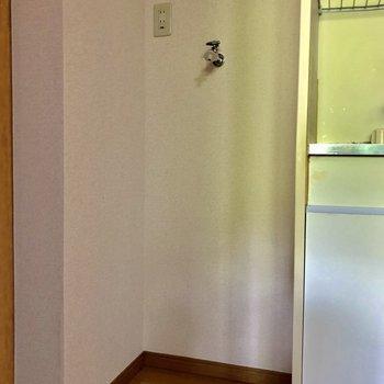 キッチン横は洗濯機を
