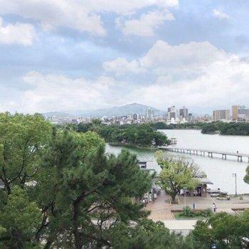 何度見ても、贅沢な眺望だ…!池の向こうは人気の六本松エリア