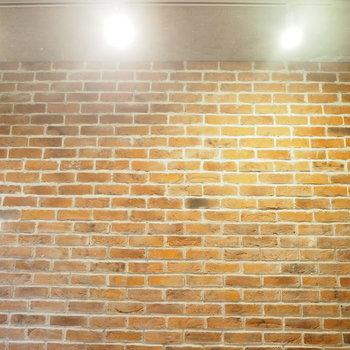 ステンレスのスポットライトとレンガ壁、最強の組み合わせ