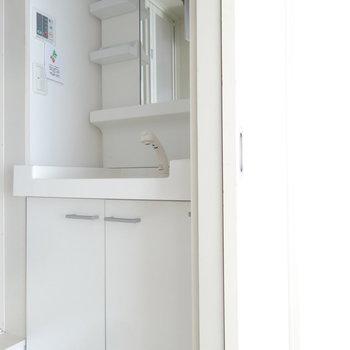 洗面台はシャンプードレッサー付き。