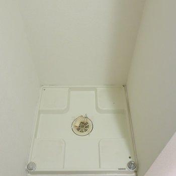 洗濯パンは隅っこにあります。サイズにはご注意を(※写真は4階の同間取り別部屋のものです)