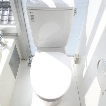 こんな日の当たるトイレはじめて。