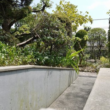 眺望というか、大きな庭!。※写真は、前回撮影時のもの
