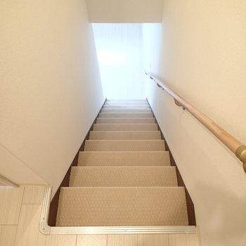 階段はカーペット仕様