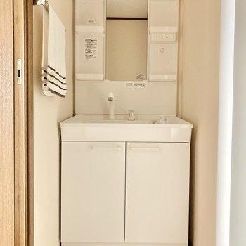 洗面台はしっかり大きめ!タオル掛がついているのは地味に嬉しい...!笑 (※写真の小物は見本です)