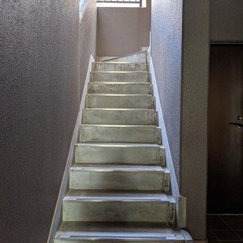 毎日の階段昇降でいい運動☆