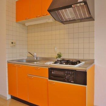 綺麗なオレンジ色◎。※写真は前回撮影時のもの