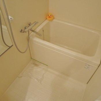 お風呂はコンパクト。※写真は前回撮影時のもの