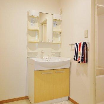脱衣スペースもしっかり、洗面台も実用的