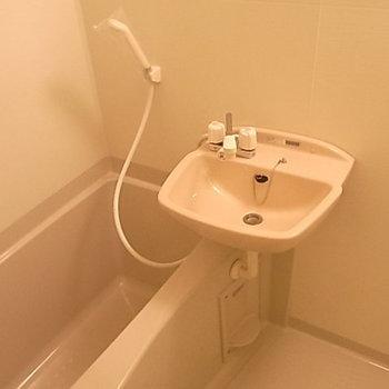 一人暮らしには十分な水周り。*写真は別部屋です