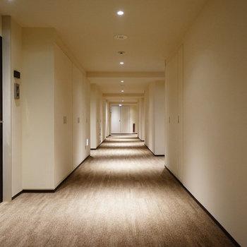 お部屋までの廊下、綺麗!!