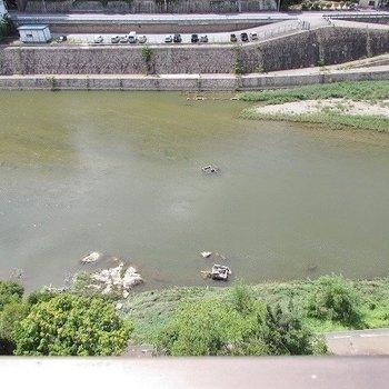 これが、武庫川です!。※写真は前回撮影時のもの