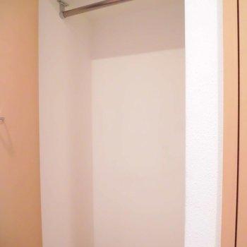 収納は奥行きが嬉しいです※写真は別室、間取り反転です