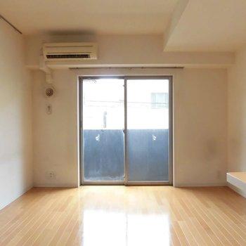 玄関開けるとこんな風景※写真は別室、間取り反転です