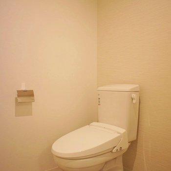 トイレはアメセパタイプ。※写真は前回掲載時のものです。