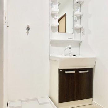 洗面台と洗濯パンがあるだけのシンプルな脱衣所でした。
