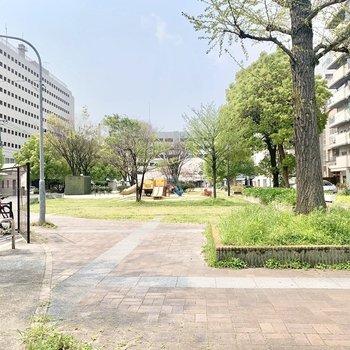 人参公園はとても広々。