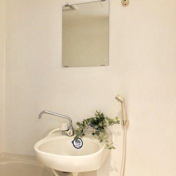 洗面台には鏡もしっかりね!(※インテリアは見本です。)