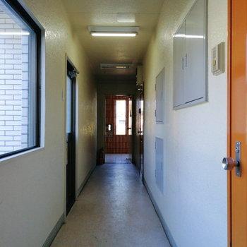 こちらが共用部。1階なのですぐエントランスです。