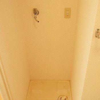 写真は501号室になります。(写真は前回募集時のものです。ご了承ください。)