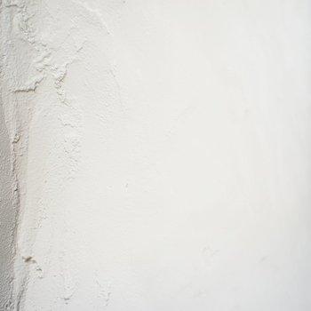 こっちは白塗装※写真は前回募集時のものです。