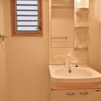 洗面台は収納力豊富 ※写真は同間取り別部屋です