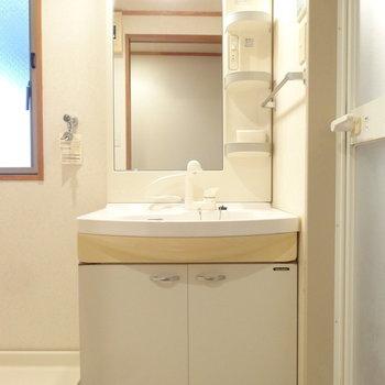 洗面はとっても大きめサイズです。
