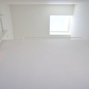 梯子をのぼりましょう。天窓!※写真は別部屋