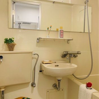 横長のミラーと洗面の台が女性にも嬉しいし、広く感じるポイント。
