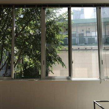 光の差し込む大きな窓、きもちいい〜!