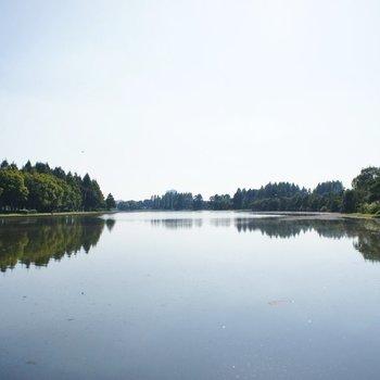 水元公園、とっても神秘的な公園です
