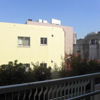 隣の建物との距離もあるのでしっかり空が見渡せます