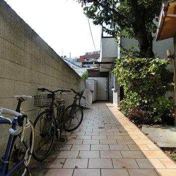 自転車と木々