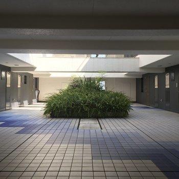 11階の共用部分、まるで公園の広場です!