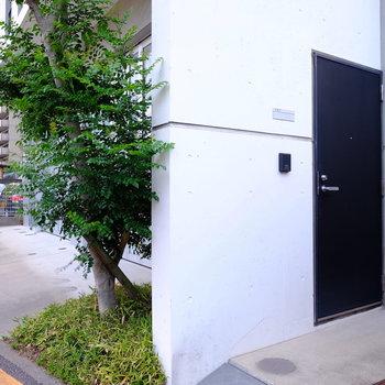 建物の右端が今回のお部屋です。
