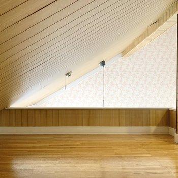 奥側の空間は天井が低くなっていますので、物置にしてもいいかな。