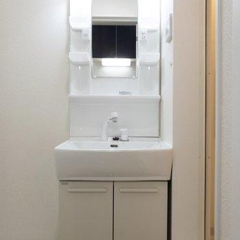 サニタリースペースへ。綺麗な洗面台に......