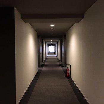 お部屋前の廊下部分。ここは空調もばっちり!ホテルにいる気分になります
