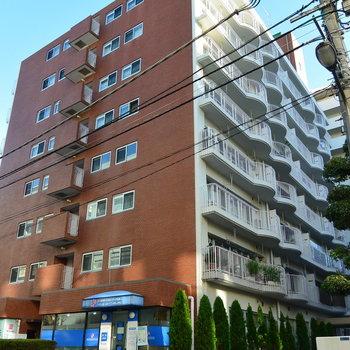 11階建てのしっかりしたマンション