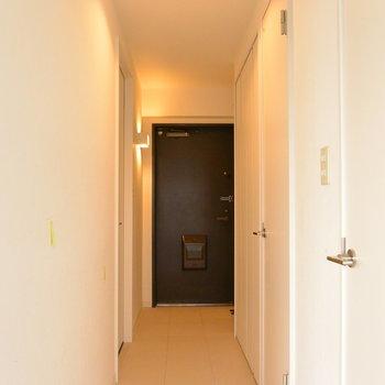 玄関から廊下はフラット