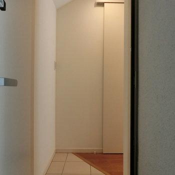 玄関扉を開けると、こんな感じ