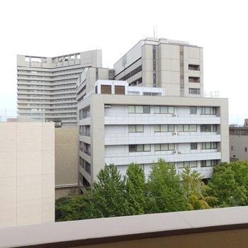 目の前には名市大病院