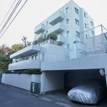 建物裏からみると大きなマンション!