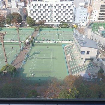 テニスの様子を高みの見物。