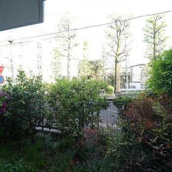 眺望はこんな感じ、一目は植栽で遮ります!