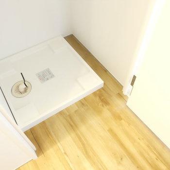 洗濯機前はしっかりと扉あり