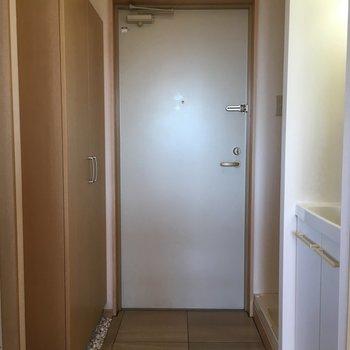 玄関+洗濯機置場+独立洗面台