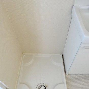 洗濯機もお隣におけます!