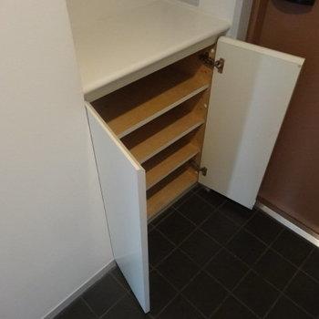 シューズボックスありますよ。※写真は3階の同間取り別部屋のものです。