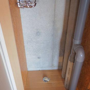 洗濯機は小さめじゃないと入らないかも。※写真は別室です